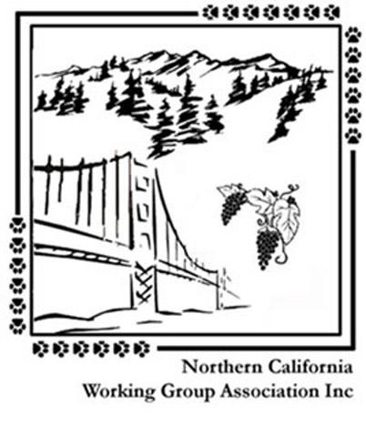 NCWGA1_Logo_Ver4 copy