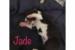 week2-jade-1
